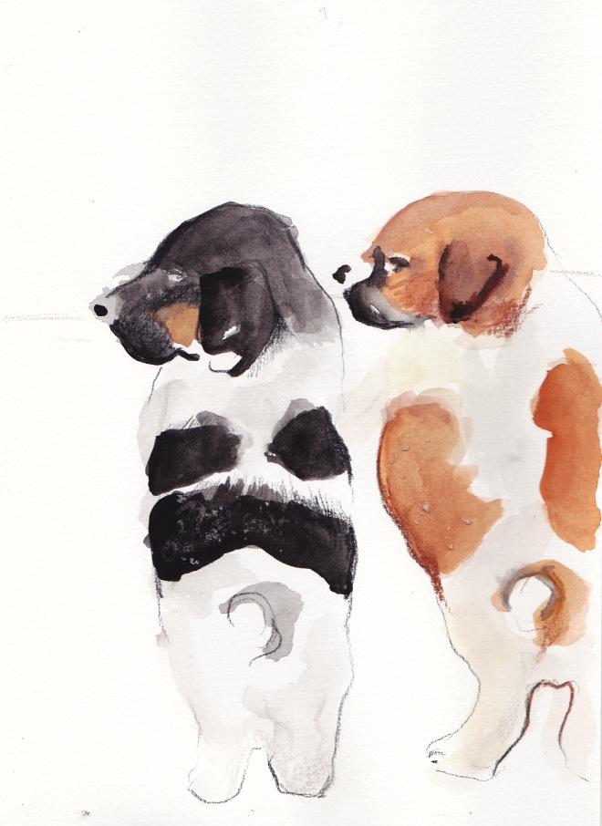 a couple o pups